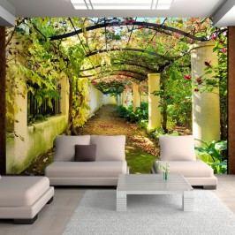 Tapet format mare Artgeist Pergola, 350 x 245 cm