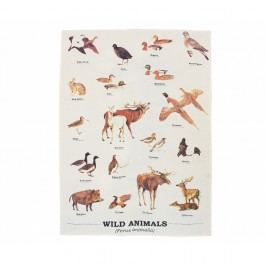 Prosop Gift Republic Wild Animals Multi