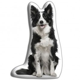 Pernă Adorable Cushions Border Collie