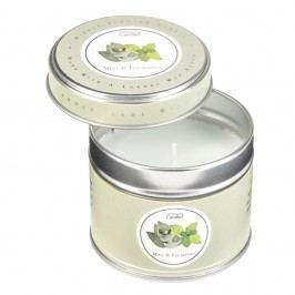 Lumânare parfumată în cutie Copenhagen Candles Mint & Eucalyptus, 32 ore